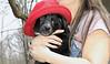 bruiser (red hat)_00003