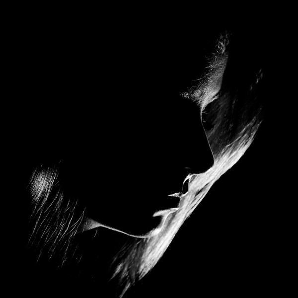 Louise_Morin_Excellence_Silhouette-1-6