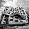 Frank Gehry's Center for Brain Health
