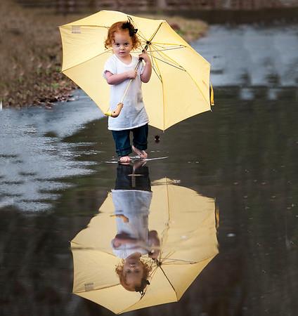 4x4 umbrella