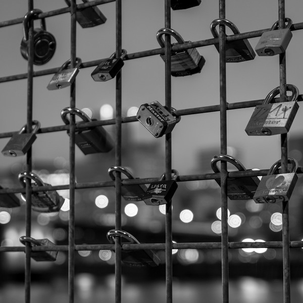 Locks on the fence along the east side of the Willamette River with Portland, Oregon skyline in the background.