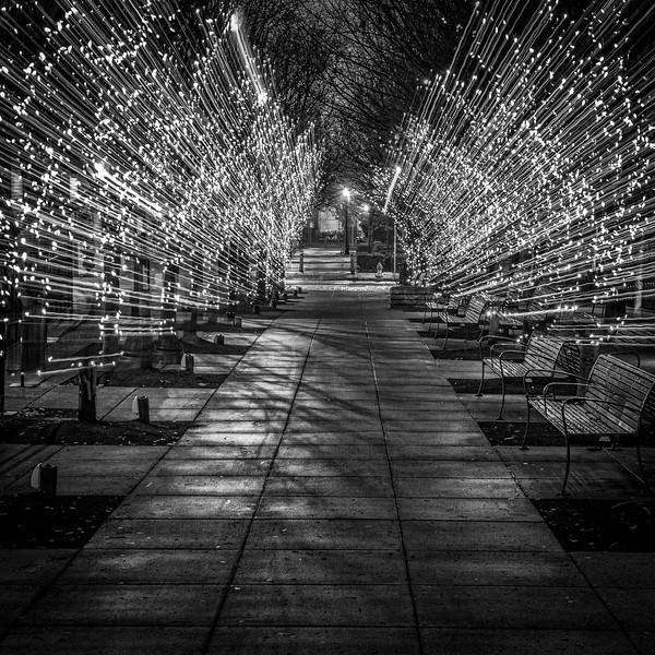 Lights at Jamison Square Park