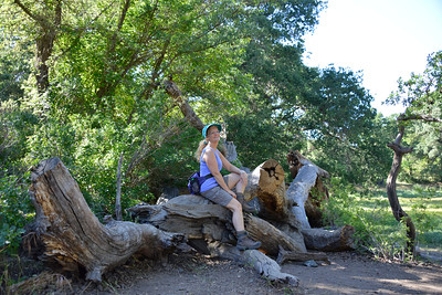 Hiking with friends at Picchetti Ranch Open Space Preserve