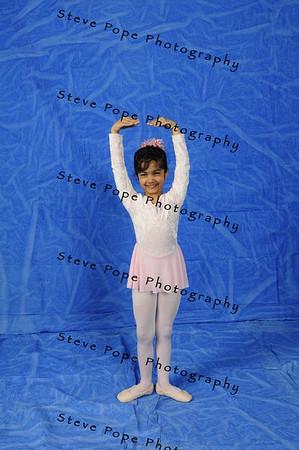 2011 Srivastava 02