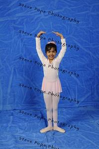 2011 Srivastava 06