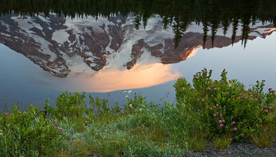Mt Rainier at Sunrise from Reflection Lake
