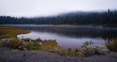 Mt Rainier, WA (2008)