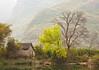 Scenery along the Yulong River (a branch off Li River)