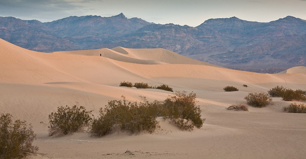 More sand dunes.