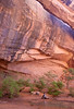 ENJOYING LIFE.  The alcove arch (with a 243 feet span) is inside Negro Bill Canyon