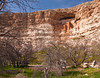 Montezuma Castle - built by the Southern Sinagua farmers in the 1100s CE (Common Era).  This five-story, 20-room dwelling stands 100 feet above the valley.