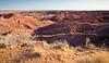 Painted Desert - Topini point