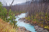 Kootenay National Park (Aug/Sept, 2010)