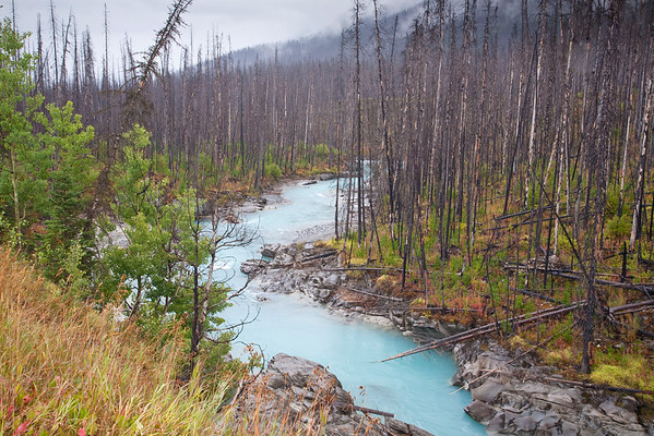 Kootenay National Park (Aug/Sept, 2010)