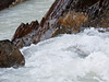Kicking Horse River - Yoho National Park