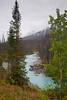 Vermillion River - Kootenay, BC