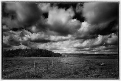 Saskatchewan (June)