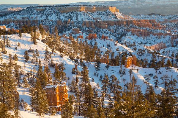 Bryce Canyon  (January, 2015)