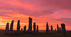 Sunrise - Callanish Stones