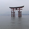 the famous shinto gate; Miajima, Japan