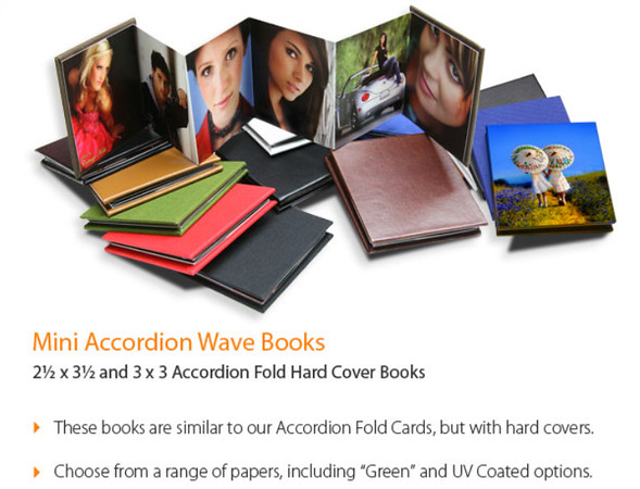 Mini Accordian Wave Books