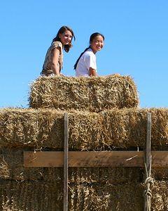 St. Meinrad Farm Day