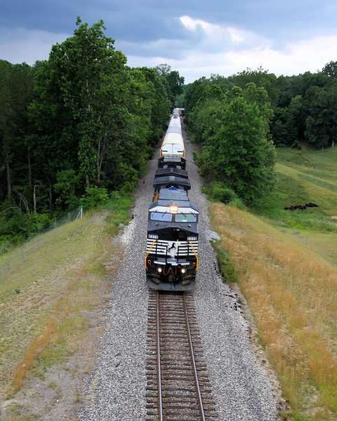 Week ending 6-29-2008.  What's not to like about trains!!??  This one was heading east, just past Eckerty Indiana.