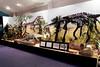 N2691_National Dinosaur Museum, Canberra E