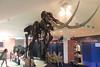 N2717_National Dinosaur Museum, Canberra E