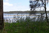 26/01/2014 - Lake Munmorah