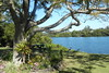 13/08/2017 - Clarence River Banks, Chatsworth, NSW