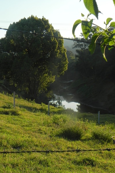 15/08/2017 - Richmond River, Wiangaree, NSW
