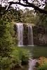 1997 Jul - Dangar Falls, Waterfall Way, Dorrigo