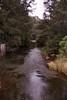 1997 Jul - Bielsdown River at Dangar Falls, Dorrigo Falls, NSW