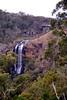 1997 Jul - Ebor Falls, Waterfall Way, Dorrigo Plateau