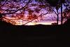 1997 Jul - Sunset Along The Armidale Road Between Dorrigo and Grafton