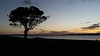 13/10/2016 - Sunset over Lake George when it has water in it. Taken from Ondyong Point Road, Currawang