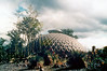 1982 May - Tropical Dome at Mt Coot-tha Botanical Gardens