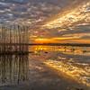Shoveler's Pond Sunrise