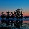 Cypress Island Preserve at Lake Martin, Breaux Bridge, Louisiana