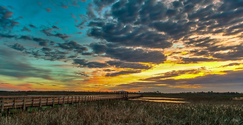 Sunrise at Cattail Marsh - Beaumont, Texas