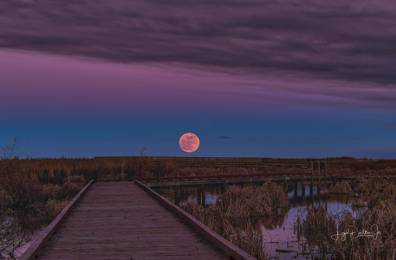 Full moon over the Boardwalk