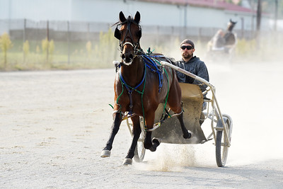 Aaron Johnston takes one of his horses for a jog around the Butler Farm Show track. Harold Aughton/Butler Eagle.