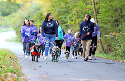 Kyra Hiles (left) and Breckin Rex lead a pack of walkers with labrador retrievers Violet and Mable during Saturday's Butler County Humane Society Mutt Strut at Memorial Park. Organizers said estimated that the event raised between $11,000 and $12,000. Seb Foltz/Butler Eagle 10/03/20
