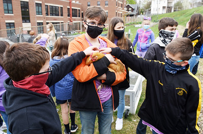 Butler Catholic students Colton Crider, left, Jake Hauser, and Guerin Hammonds give their undivided attention to Penny, a Buff Orpington chicken during activity time, Thursday, April 15, 2021. Harold Aughton/Butler Eagle
