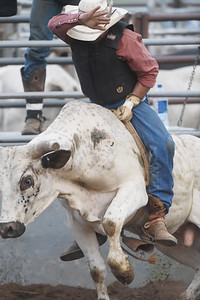 Bullriding was one of the main events at the Big Butler Fair Saturday. Harold Aughton/Butler Eagle.