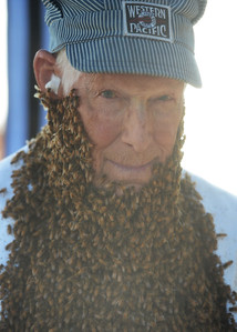 "Oliver Hill, 93, of Willows, volunteers to wear a ""bee beard"" during the Old Fashioned Country Faire and Threshing Bee on Saturday, June 11, 2016, at the Patrick Ranch Museum in Durham, California. Hill said his father and his grandfather were beekeepers, and he has worked with bees his whole life. (Dan Reidel -- Enterprise-Record)"