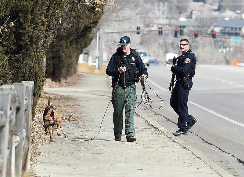 Loveland Police Officer Ryan McAuley and his k-9, Pako, search a neighborhood on the 600 block of SW Wilson Avenue for a stolen car chase suspect as an armed Larimer County Sheriff's Deputy backs them up in Loveland.  (Photo by Jenny Sparks/Loveland Reporter-Herald)