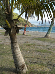 Beach at the Strip St.Kitts
