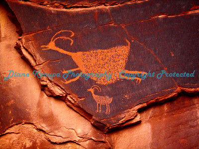 Monument Valley - Navajo Reservation - Arizona - Petroglyphs     Photo #1635